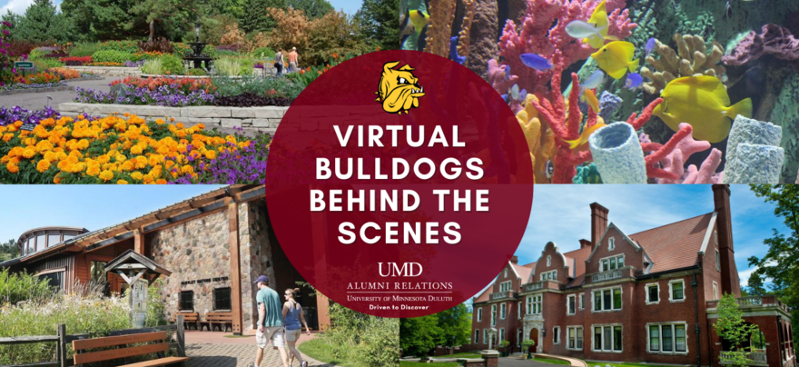 virtual bulldogs behind the scenes